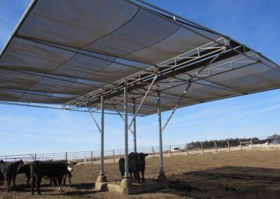 Farm Photo 2
